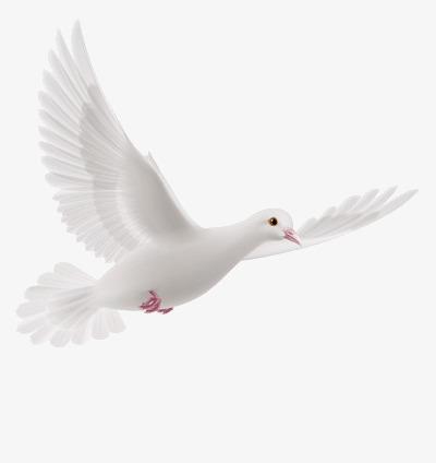 Gebetsabend zum Heiligen Geist