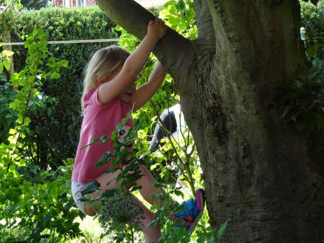 maedchenundbaum